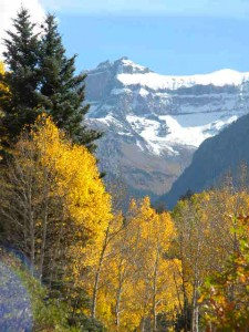 Ouray Fall 201502