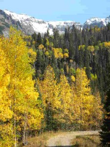 Ouray Fall 201504