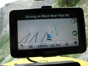 Black Bear036